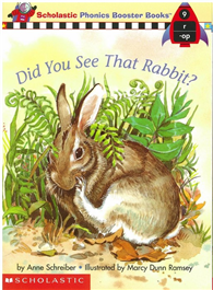 Phonics Booster Books 09: Did You See That Rabbit?