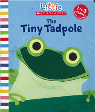 Little Scholastic: Tiny Tadpole (Board book)