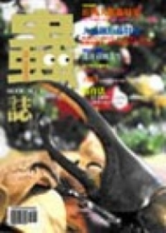 蟲誌MOOKNO(3):長戟大兜蟲特集