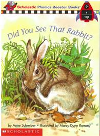 Phonics Booster Books 09: Did You See That Ra