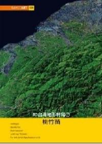 ImageART(8):3D台湾地形特写(2)桃竹苗