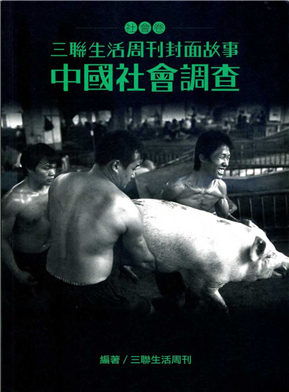 中國社會調查(三聯生活周刊封面故事-社會卷)