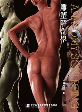 雕塑解剖学