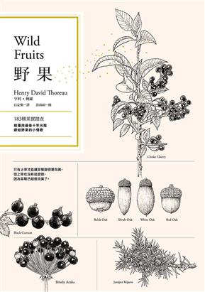 野果:183种果实踏查,梭罗用最后十年光阴,献给野果的小情歌