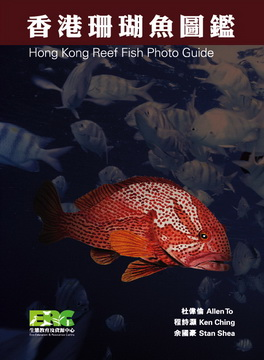 香港珊瑚鱼图鑑