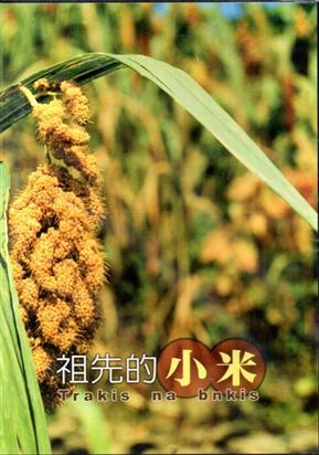 祖先的小米DVD