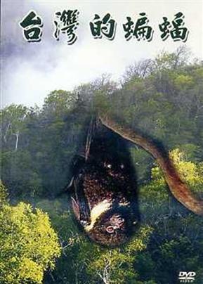 台湾的蝙蝠DVD