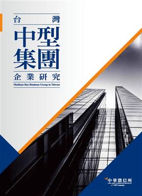 2017台湾中型集团企业研究